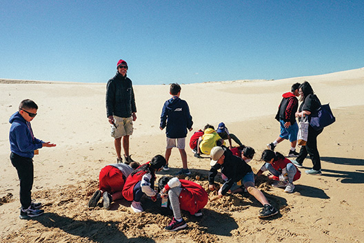 Geography at Stockton Bight Sand Dunes